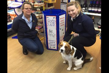 Christmas Collection For Dogs In Local Rescue Centre
